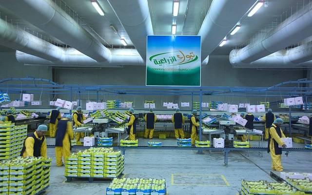 مصنع تابع لشركة تبوك للتنمية الزراعية