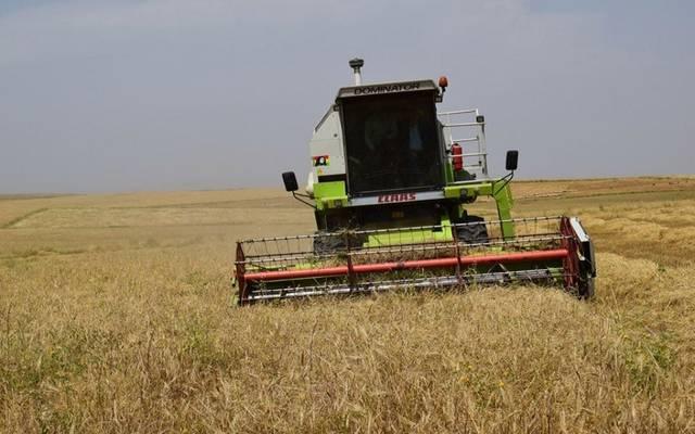 آلات زراعية تجني محصول الحنطة بالعراق- أرشيفية