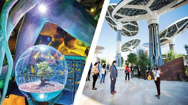 جناح الاستدامة في اكسبو دبي