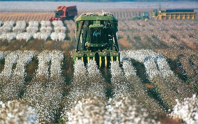 Arab Cotton Ginning trims losses to EGP 2.55m in Q1