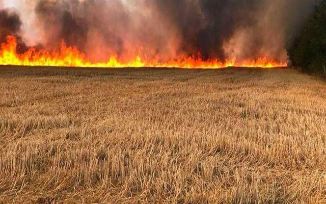 حرائق محاصيل العراق - أرشيفية