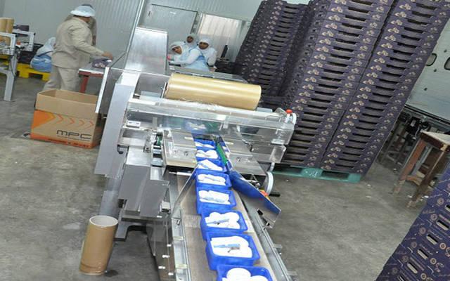 خط تعبئة بمصنع الخليجية لإنتاج الفطر