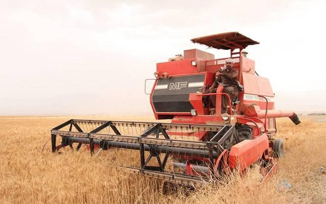 """""""التجارة العراقية"""": السعودية تدرس الاستثمار بزراعة 2.5 مليون فدان بالأنبار"""