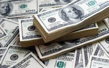 الدولار يرتفع أمام الين الياباني عند مستوى 113.36 ين