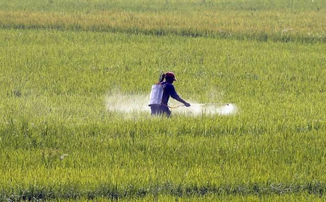 الزراعة المصرية توضح حقيقة رفع أسعار الأسمدة