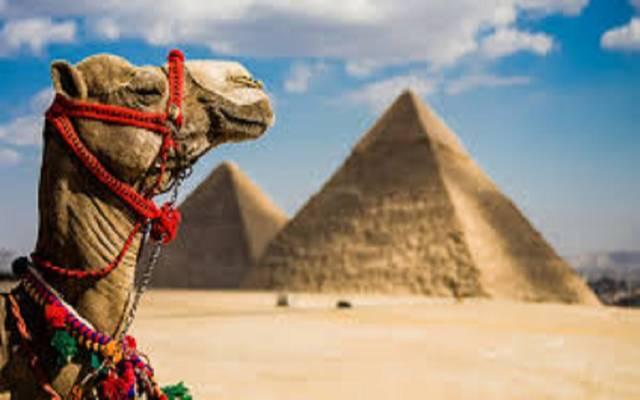 الحكومة المصرية تستعرض حزمة مقترحات للنهوض بقطاع السياحة خلال 2021