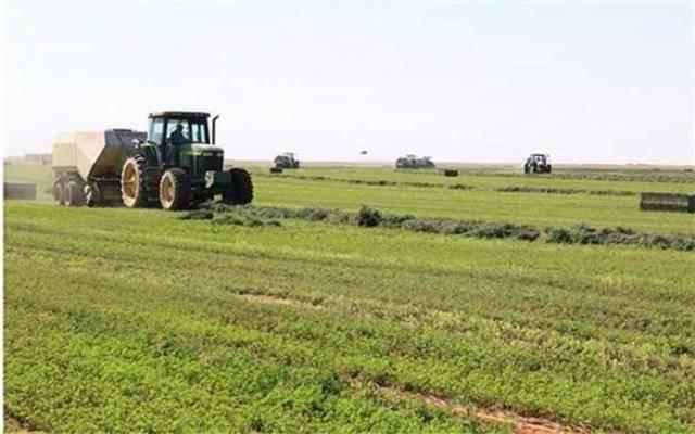 أرض زراعية تابعة لشركة الجوف