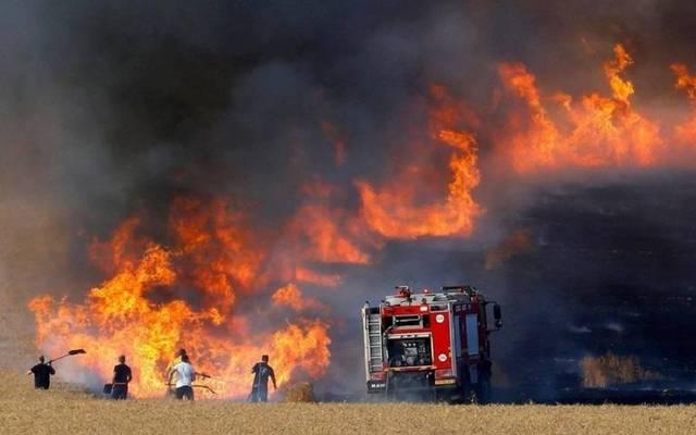 صورة لحرائق حقول القمح