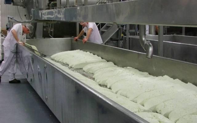 مصنع أجبان - أرشيفية