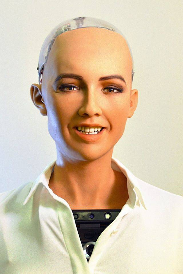 سوف تقوم صوفيا بعقد مقابلة إذاعية بهدف مناقشة مستقبل الابتكار والتقنية في قطاع الطيران