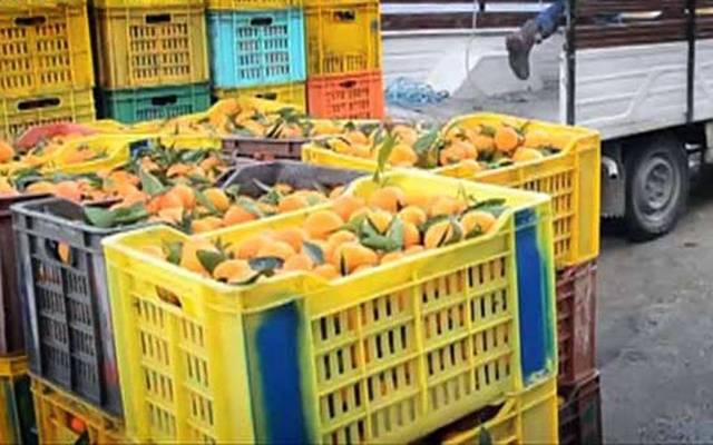 تونس تشهد زيادة في عجز الميزان التجاري الغذائي في 5 أشهر