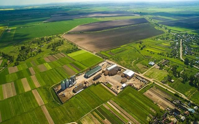 """مزرعة تابعة لشركة المزارعون المتحدون التي استحوذت عليها """"سالك"""""""