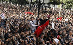 Tunisian protests sparked the Arab Spring in 2011