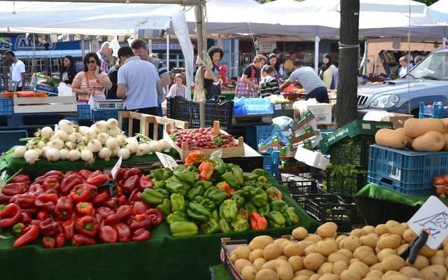 أسعار الخضراوات انخفضت 8.6% خلال فبراير على أساس شهري