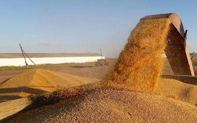 262 دولار سعر طن القمح تشمل تكاليف الشحن