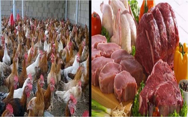 الدواجن واللحوم
