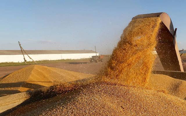 توقعات بزيادة واردات العراق من الحبوب في 2018