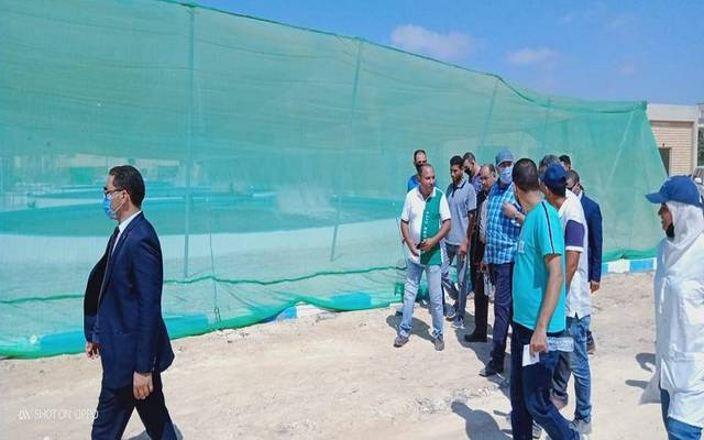 وزير الزراعة يقوم بجولة مفاجئة لبعض المشروعات الزراعية بالإسكندرية والبحيرة