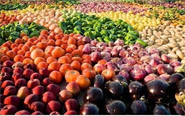 صادرات زراعية