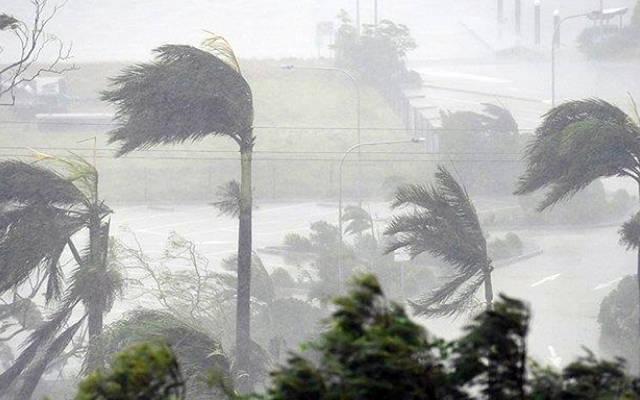 الإعصار تسبب في خسائر لعدة شركات مدرجة بالبورصة