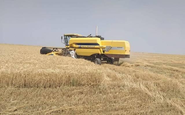 الوزراء العراقي يقر تحديد بدلات إيجار الأراضي الزراعية