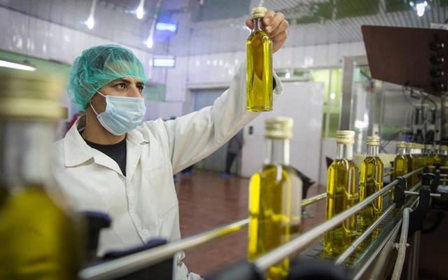أحد معامل صناعة الزيتون في تونس