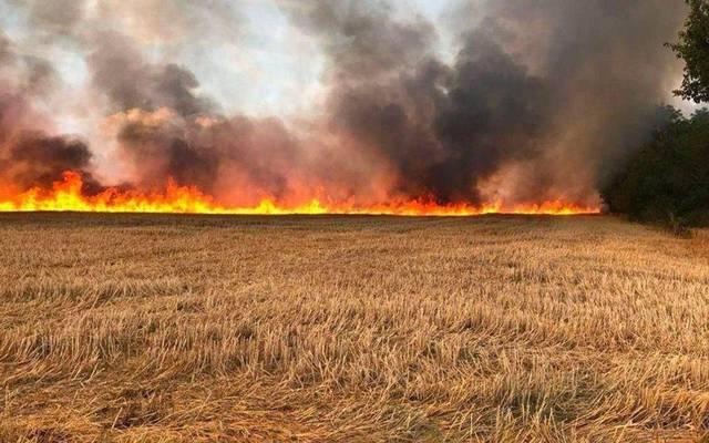 حريق المحاصيل بالعراق - أرشيفية