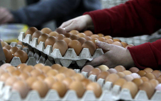 """""""الغذاء"""" الكويتية تصدر توصيات بخصوص استيراد المواد والمنتجات الغذائية"""