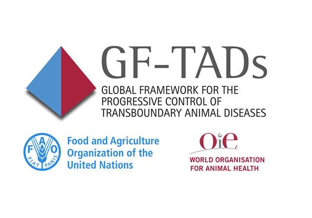 """السعودية تترشح لرئاسة اللجنة التوجيهية لمجموعة """"GF-TADs"""" عن الشرق الأوسط حتى2024"""