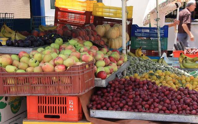 صادرات المواد الغذائية ارتفعت 57.4% في 11شهراً