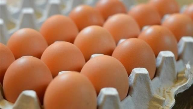 210 مليم سعر البيضة للمستهلك