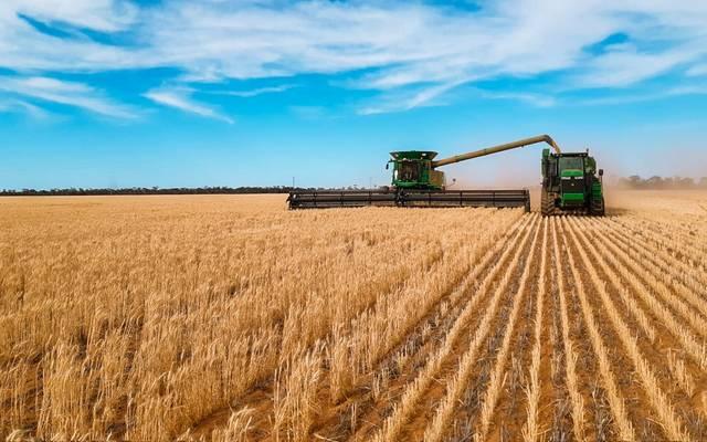 الحبوب السعودية تشتري 295 ألف طن قمح مستورد بالدفعة الثانية لعام 2021