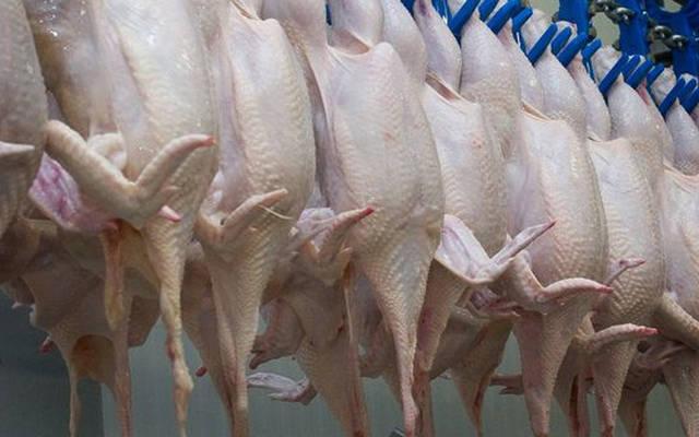 أسعار الدجاج في تونس تتراجع 18.2% خلال ديسمبر