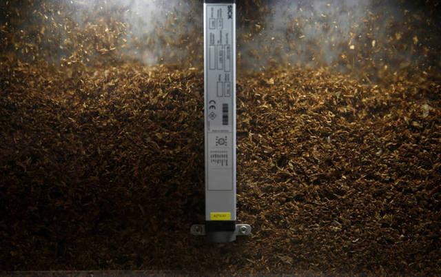 إنتاج التبغ نشاط رئيسي بالشركة