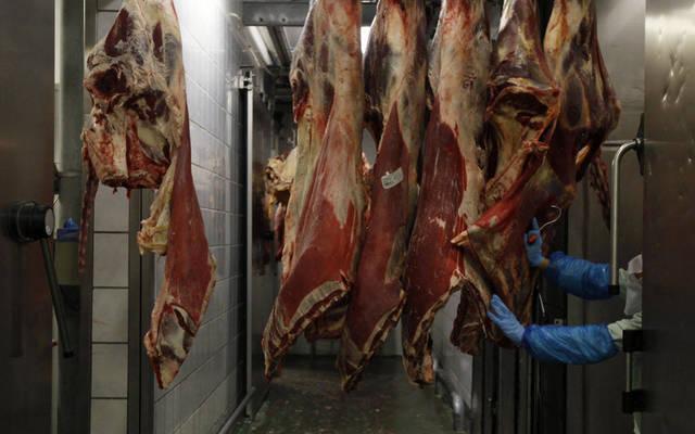 ودام:نسعى لإقامة شراكات حقيقية بقطاعي الأعلاف واللحوم مع الولايات المتحدة