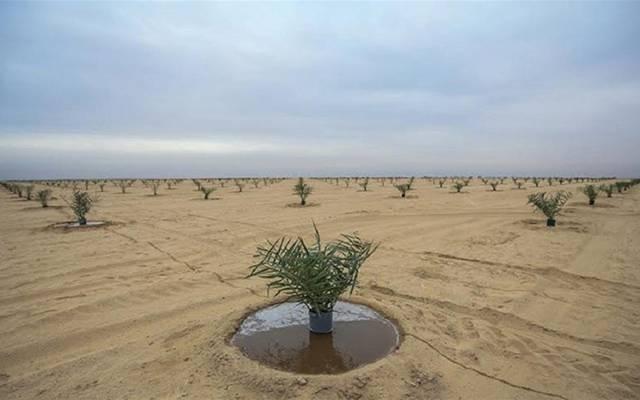 أراضي صحراوية بالعراق - أرشيفية