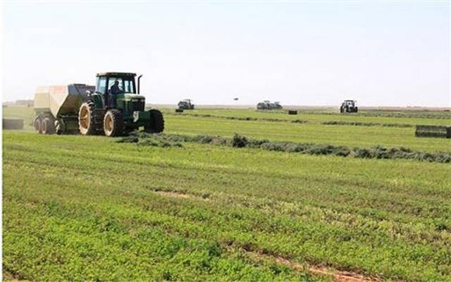 مشروع تابع للجوف الزراعية