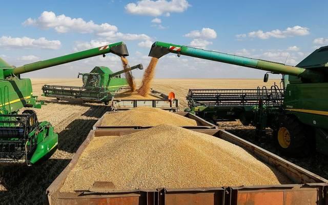 عملية حصاد القمح من الحقول