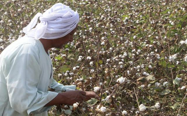 Total cotton exports amounted to 128,300 metric quintals in Q1-17/18