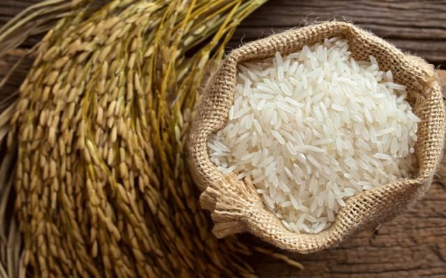 الري المصرية تحدد 9 محافظات لزارعة 724 ألف فدان أرز