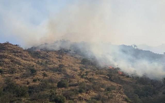صور حريق أشجار جبل عمد في الطائف